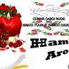 Hambalyo aroos oo ku socota lamaanaha isjecel ee Cumar Cabdi Rude iyo Nimco Yuusuf (Nimco Caddey)
